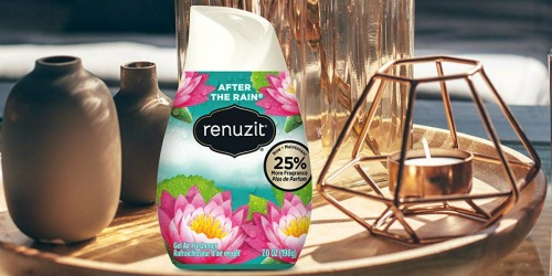 Renuzit Adjustable Gel Air Freshener 6-Pack Only $1.72 Shipped at Amazon
