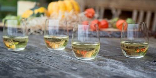 75% Off Riedel Glassware at Best Buy | Wine Glasses, Tumblers, & More