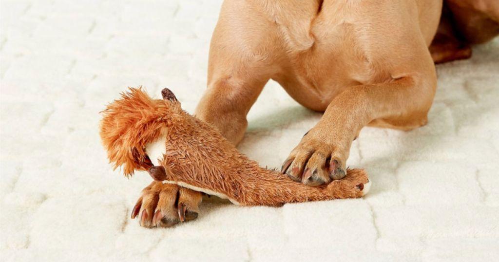 "SPOT Skinneeez 23"" Squirrel Stuffless Dog Toy with Squeaker"