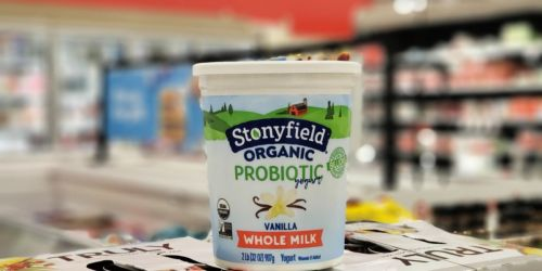 Stonyfield Organic Yogurt Quart Only $1.39 After Cash Back at Target