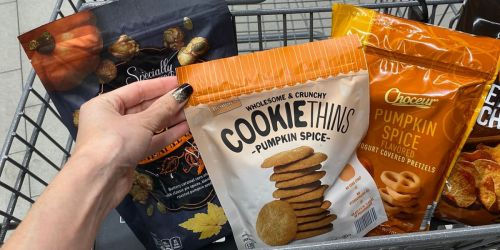 13 Pumpkin Grocery Items to Snag at ALDI   Pumpkin Cookies, Pumpkin Ice Cream & More