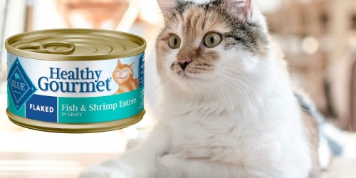 Blue Buffalo Wet Cat Food 24 Cans as Low as $13.48 at Amazon | Just 56¢ Per Can