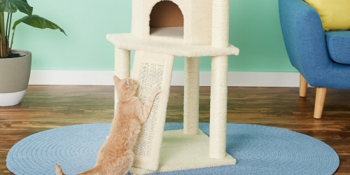 Frisco 52″ Cream Cat Tree Only $39.99 Shipped (Regularly $55)