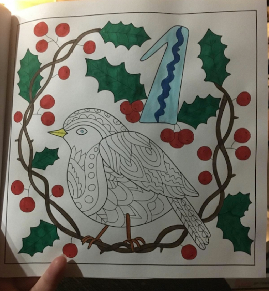 coloring book with bird and holly