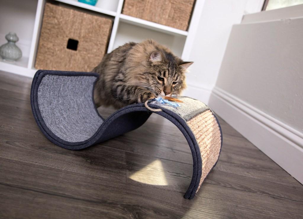 cat climbing on Pet Curl Scratcher