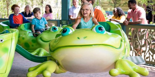 FREE Dollywood 2019 & 2020 Season Pass for Pre-K Kids | Starts October 21st