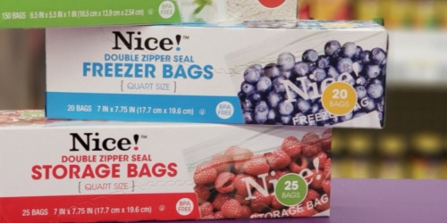 Nice! Brand Storage Bags Just 92¢ Each at Walgreens