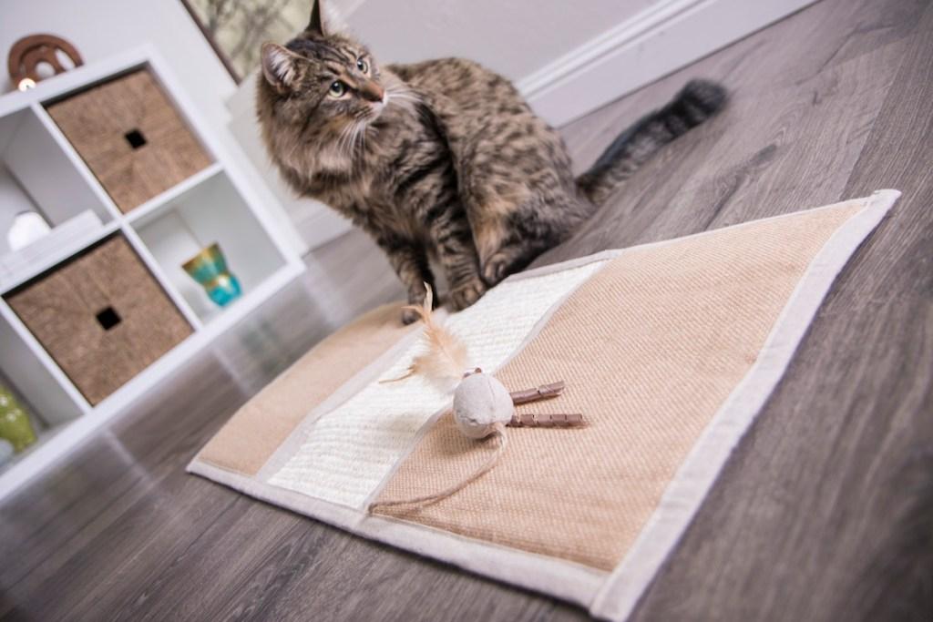 Petlink Scratcher Mat