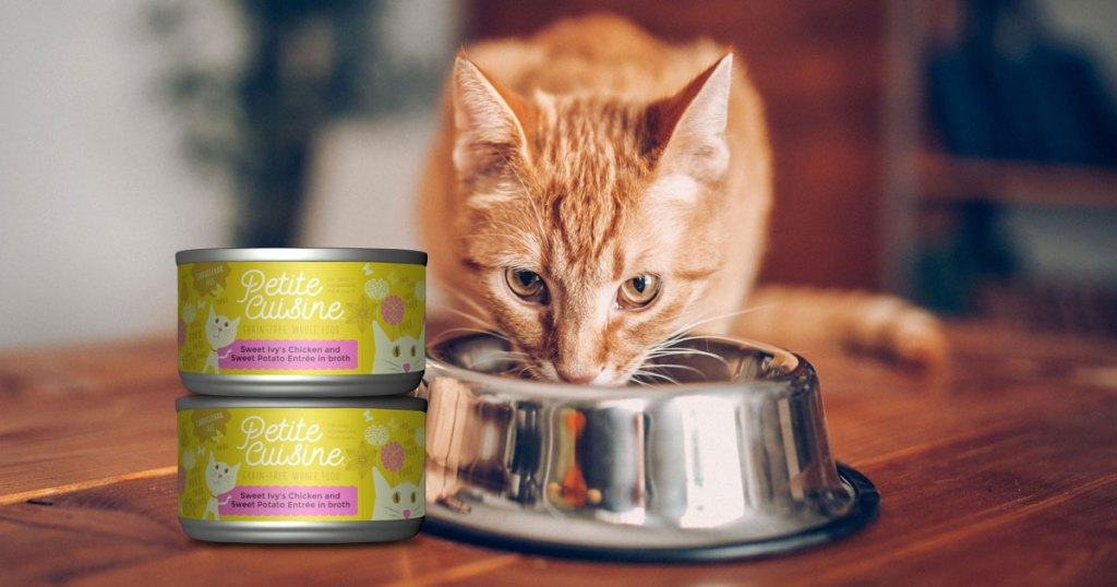 petite cuisine cat food with cat eating from a bowl