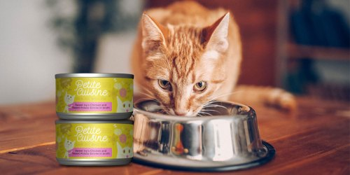 Petite Cuisine Grain-Free Wet Cat Food 24-Count Only $10.56 at Amazon (Just 44¢ Per Can)