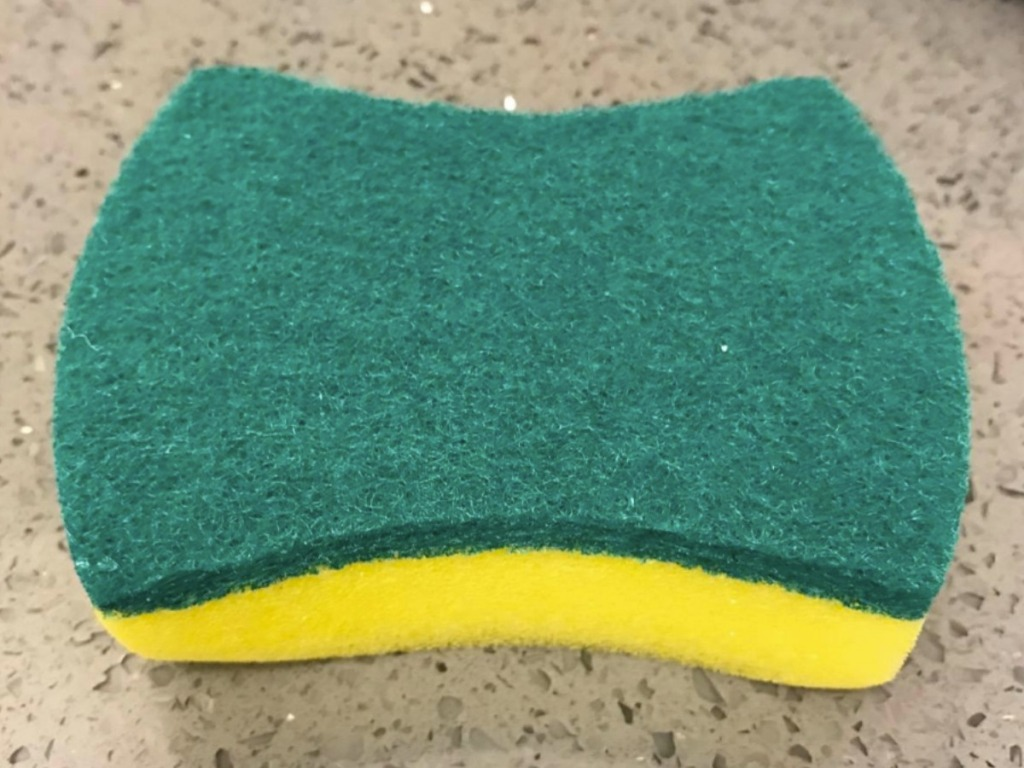Single sponge on counter top