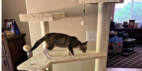 AmazonBasics 70.5″ Multi-Level Cat Tree Only $41.76 Shipped (Regularly $56)
