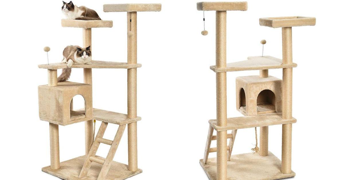 amazonbasics cat tree stock images