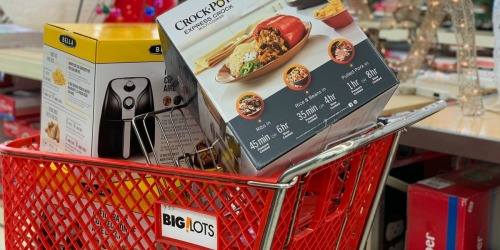 Big Lots Black Friday 2019 Ad | 50% Off Air Fryers, Crock-Pots, Christmas Trees & More