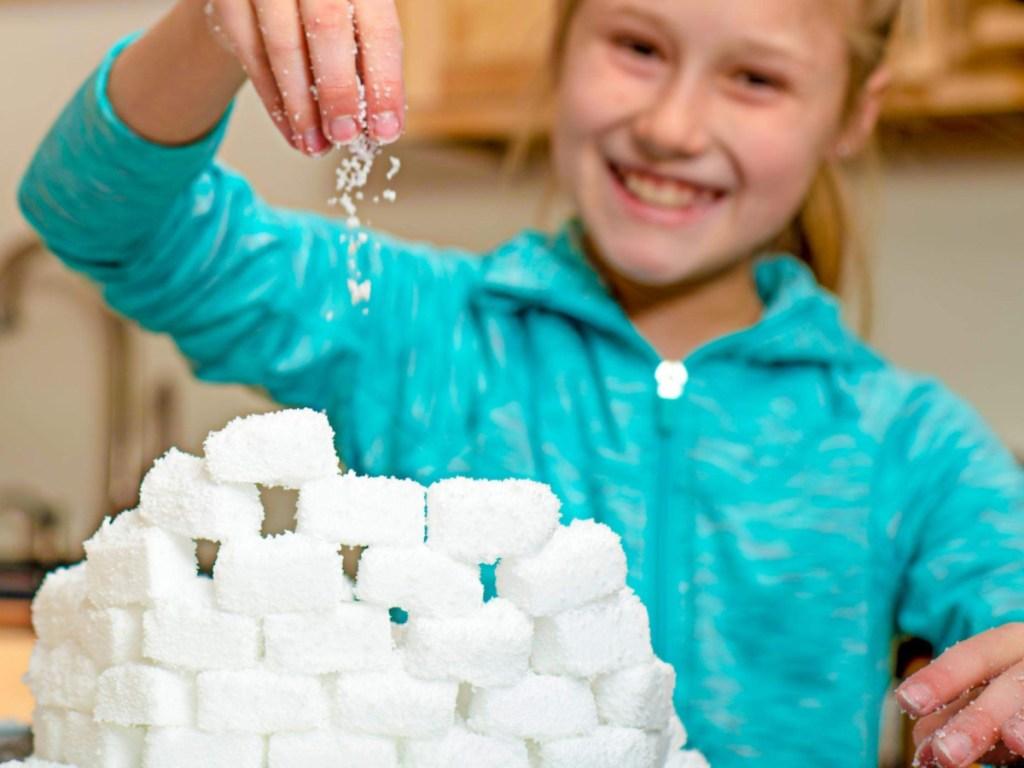 Steve Spangler Science Insta-Snow Powder