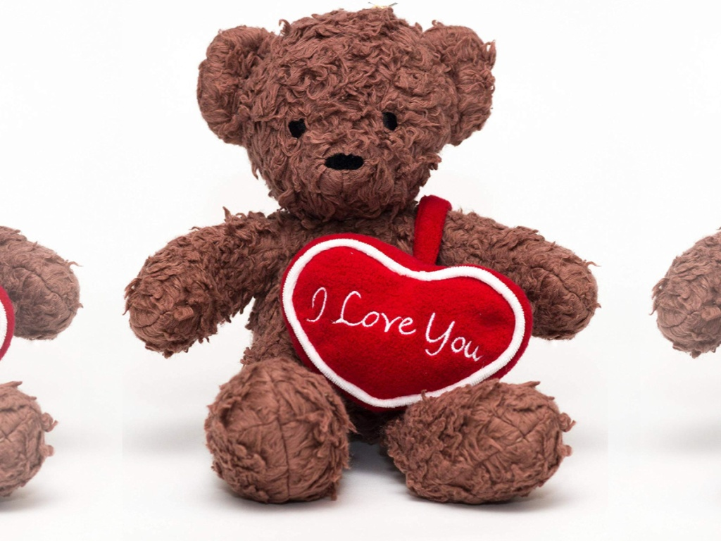 Brown I love You Bear for Humanity