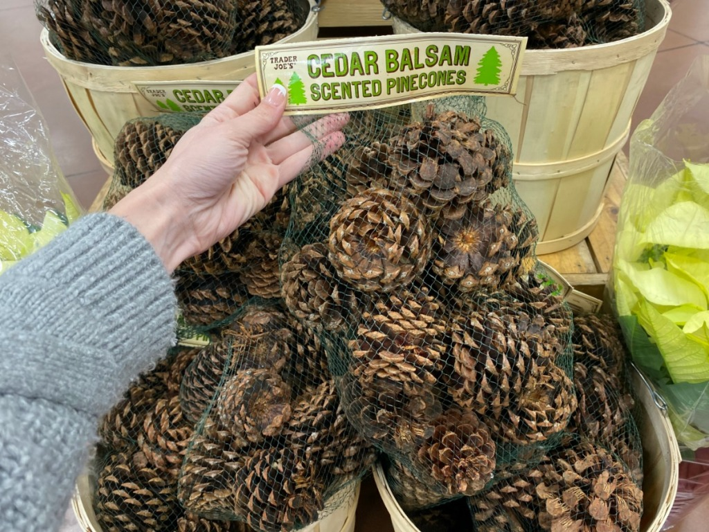 hand holding bag of pinecones