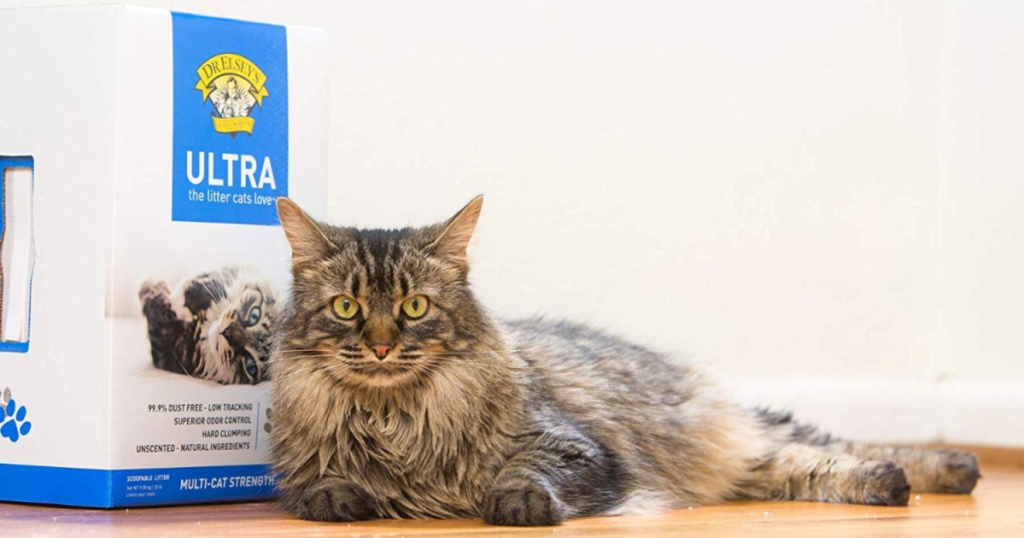 box of Dr. Elsey's Premium Clumping Cat Litter with furry tabby cat laying next to it