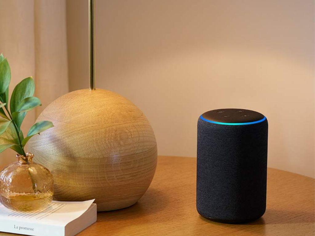 Echo 3rd Gen on desk with plant