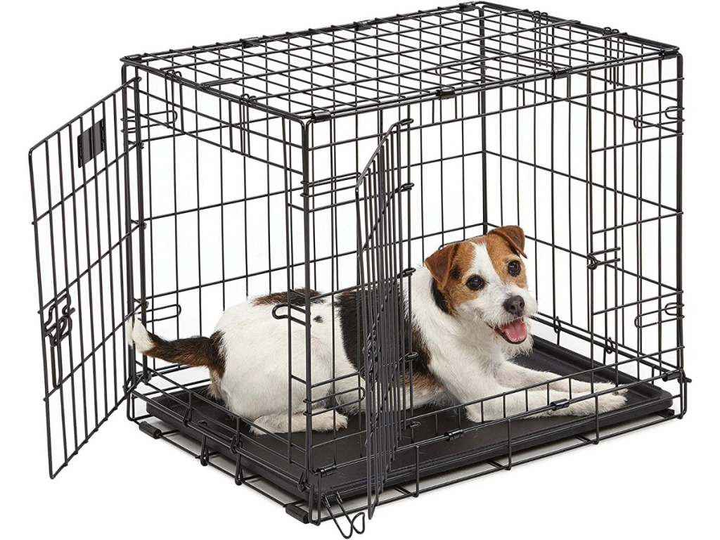 dog-laying-in-crate