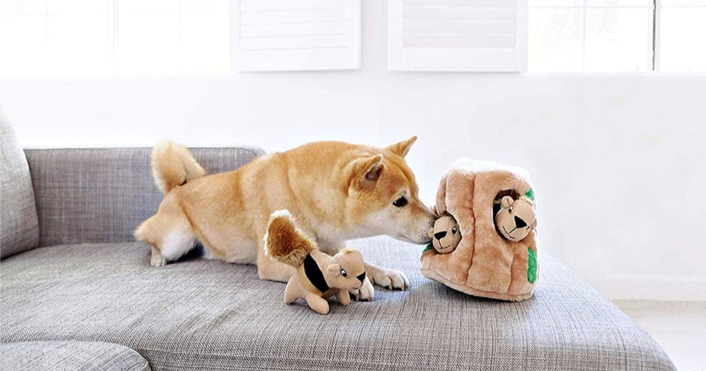 Outward Hound Interactive Puzzle Toys for Dogs