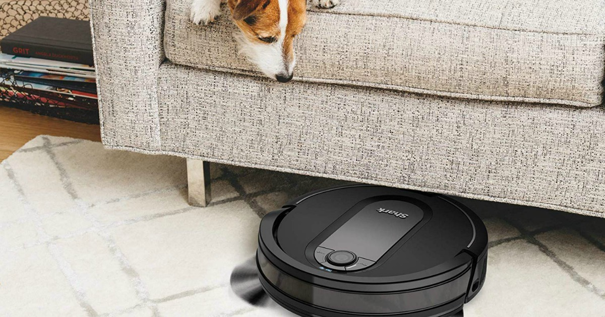 dog sitting on couch looking at robotic vacuum