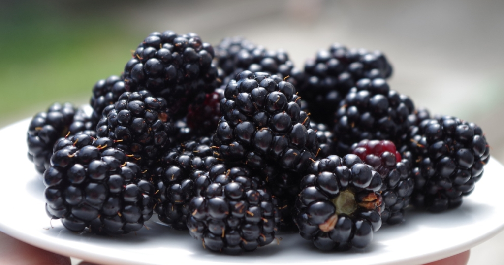 blackberries on a plate