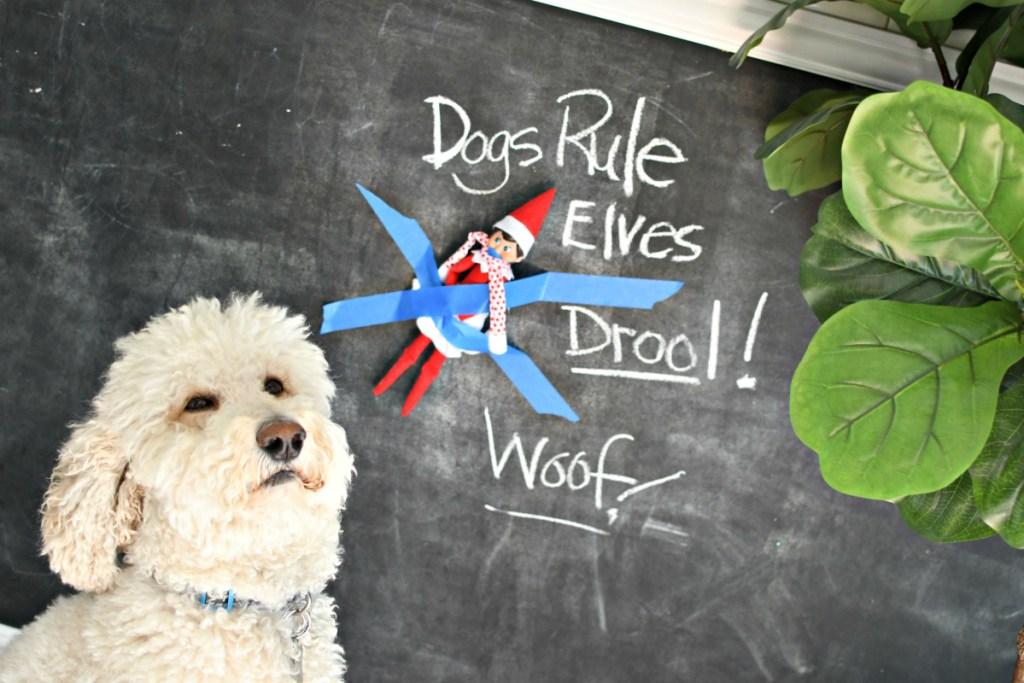 dogs rule elves drool elf on the shelf idea