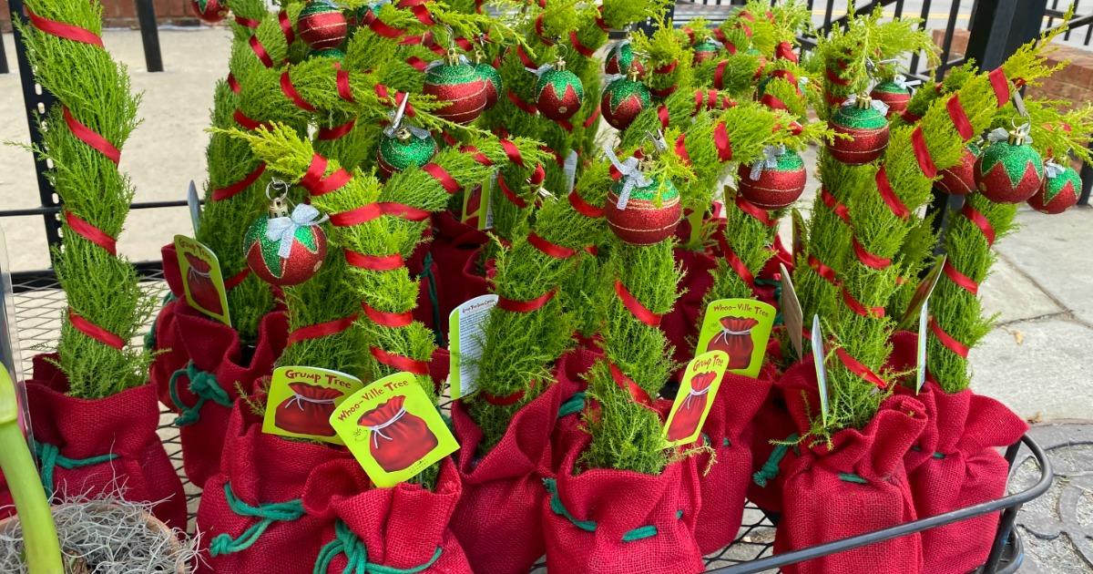 Grinch-inspired Whoo-Ville Christmas Trees at Trader Joe's