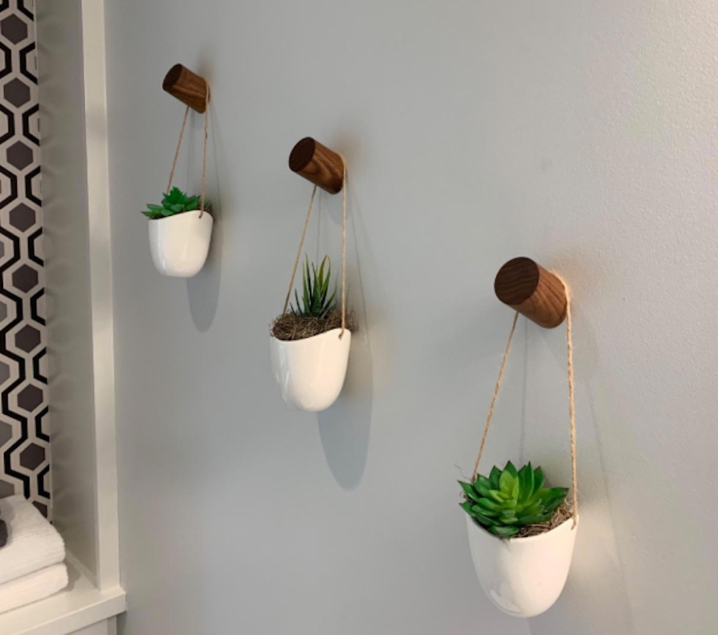 three hanging succulents one natural wood wall hooks knobs
