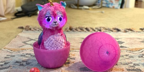 We're Cracking Open the Popular Hatchimals WOW Egg Toy!