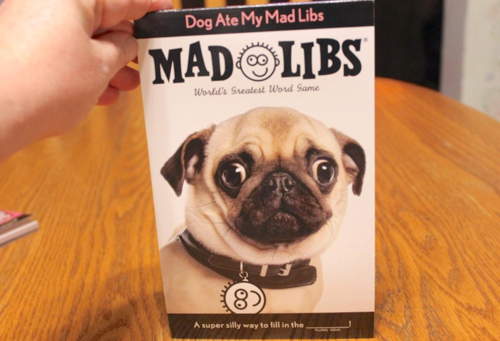 hand holding a mad libs book with dog on front