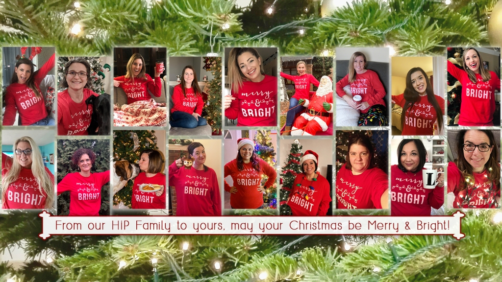 Hip2Save team wearing Merry & Bright t shirts