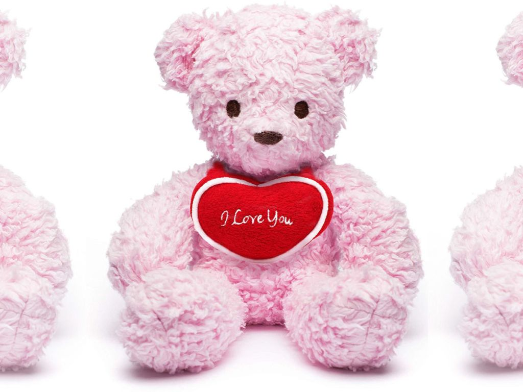 pink I love You Bear for Humanity