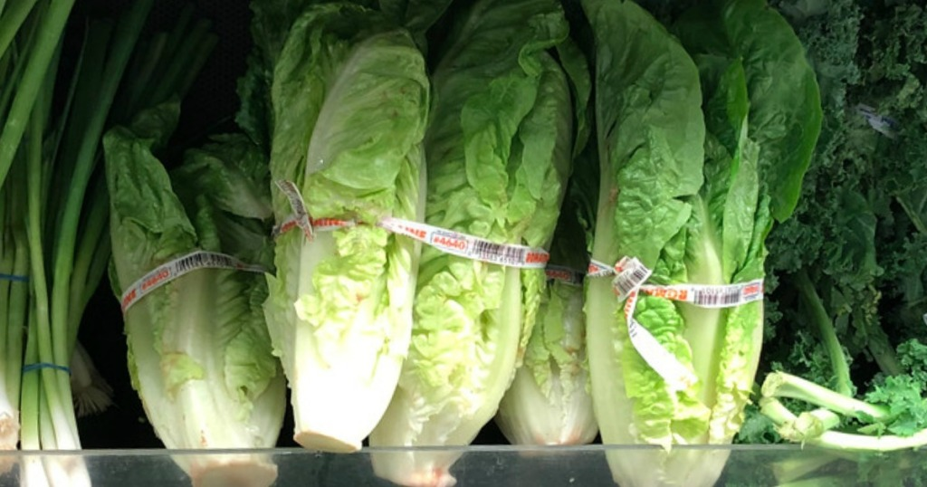 romaine lettuce at store