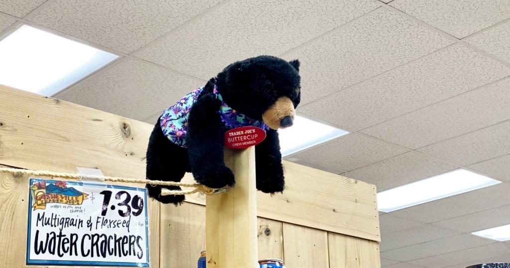 Stuffed Bear wearing a nametag at Trader Joe's