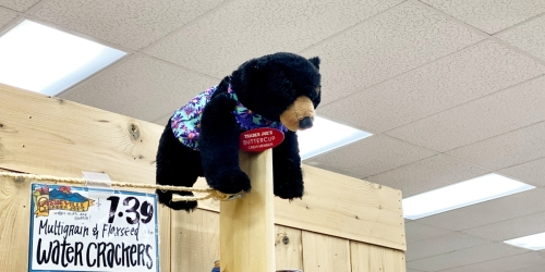 Did You Know About the Hidden Stuffed Animals at Trader Joe's?