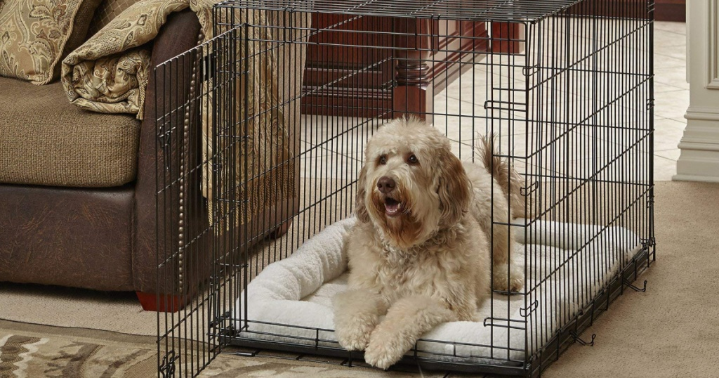 Dog laying inside a metal pet crate