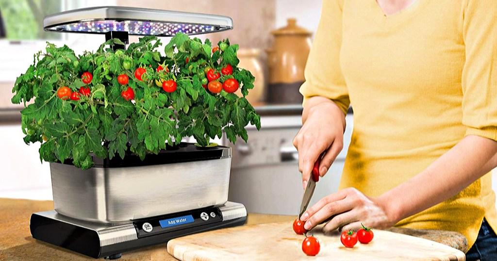 AeroGarden Harvest Elite on kitchen counter with woman cutting tomatos