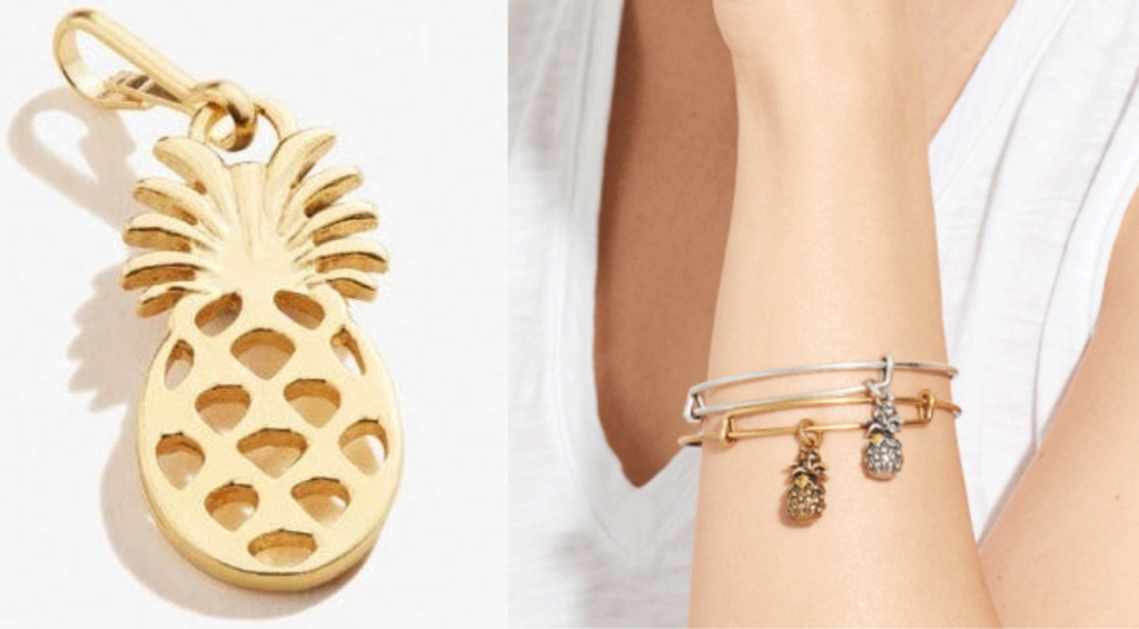 alex and ani pineapple charm and bracelet