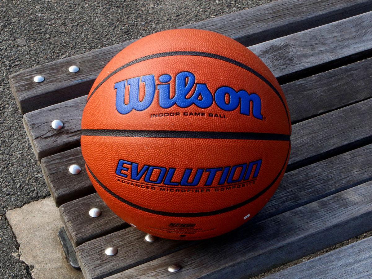 Wilson Evolution Basketball in Blue on park bench