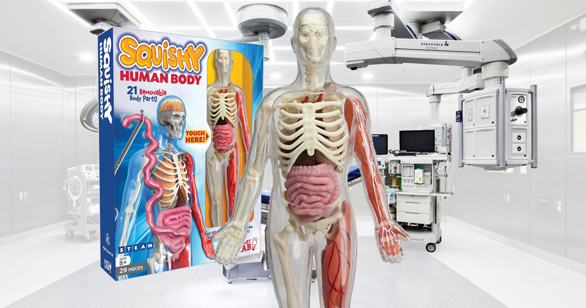 Smart Lab Squishy Human Body Kit in operating room