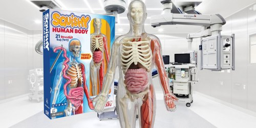 Smart Lab Squishy Human Body Kit Just $15 Shipped (Regularly $30) | Hands-On Fun