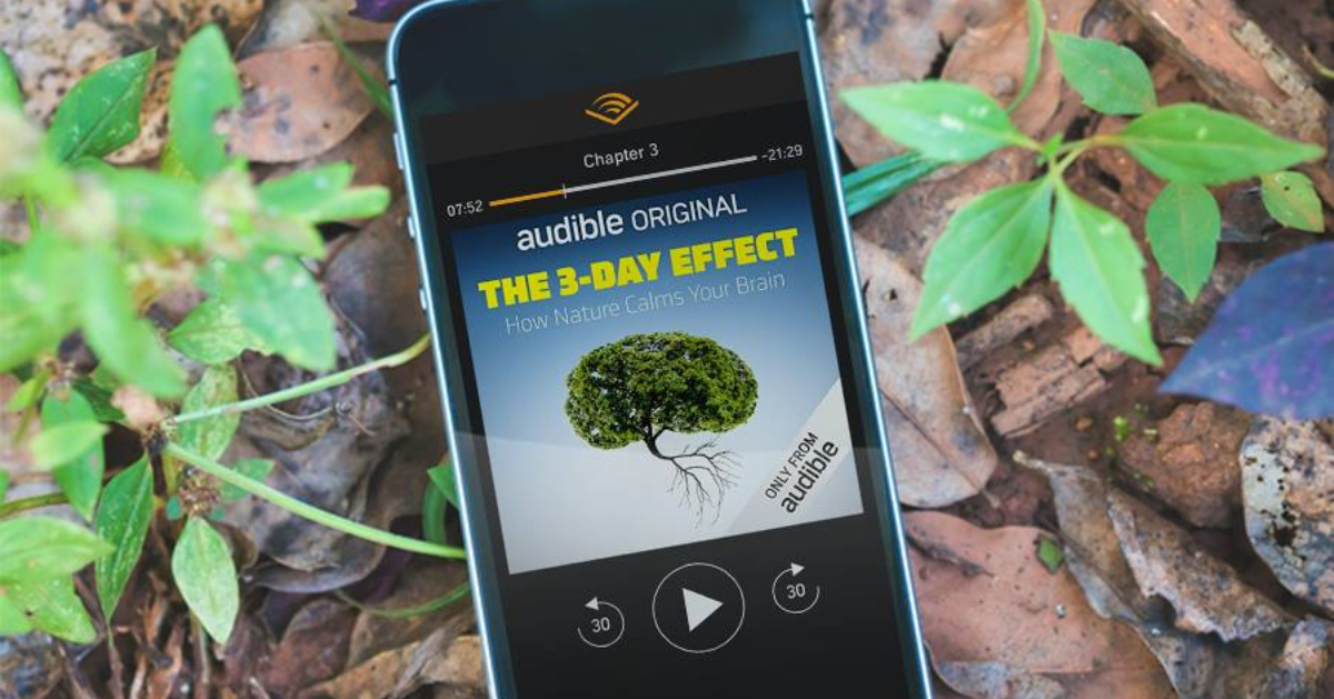 Audible audiobook on phone