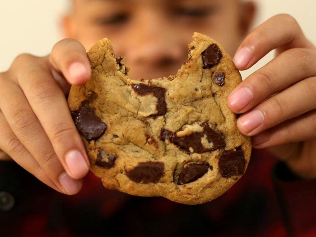 boy holding a chocolate chip cookie with a bite out of it