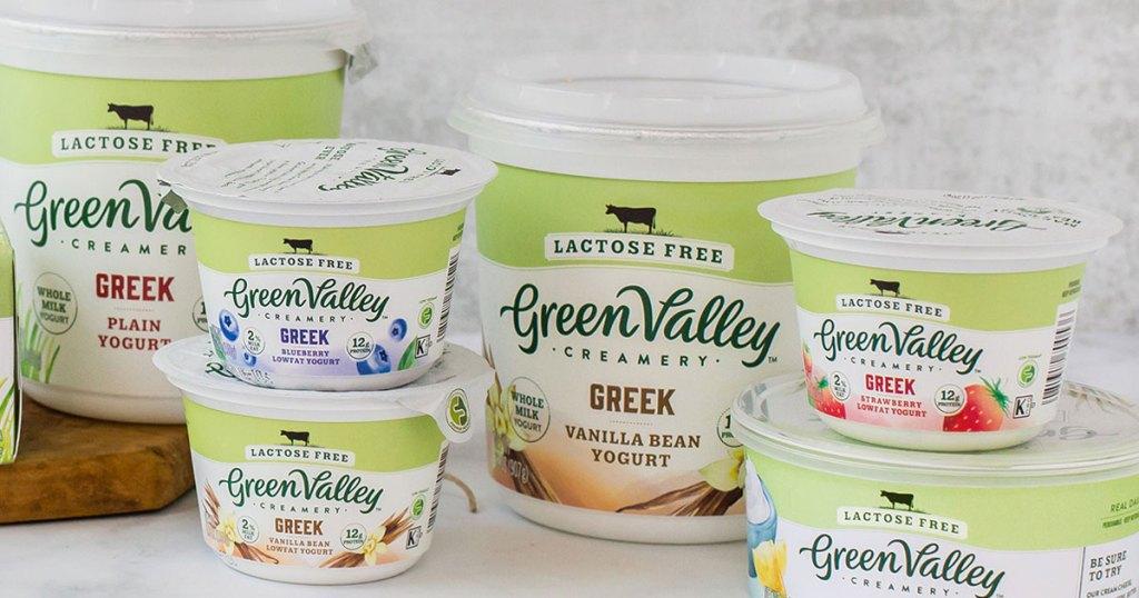 display of green valley greek yogurt on counter
