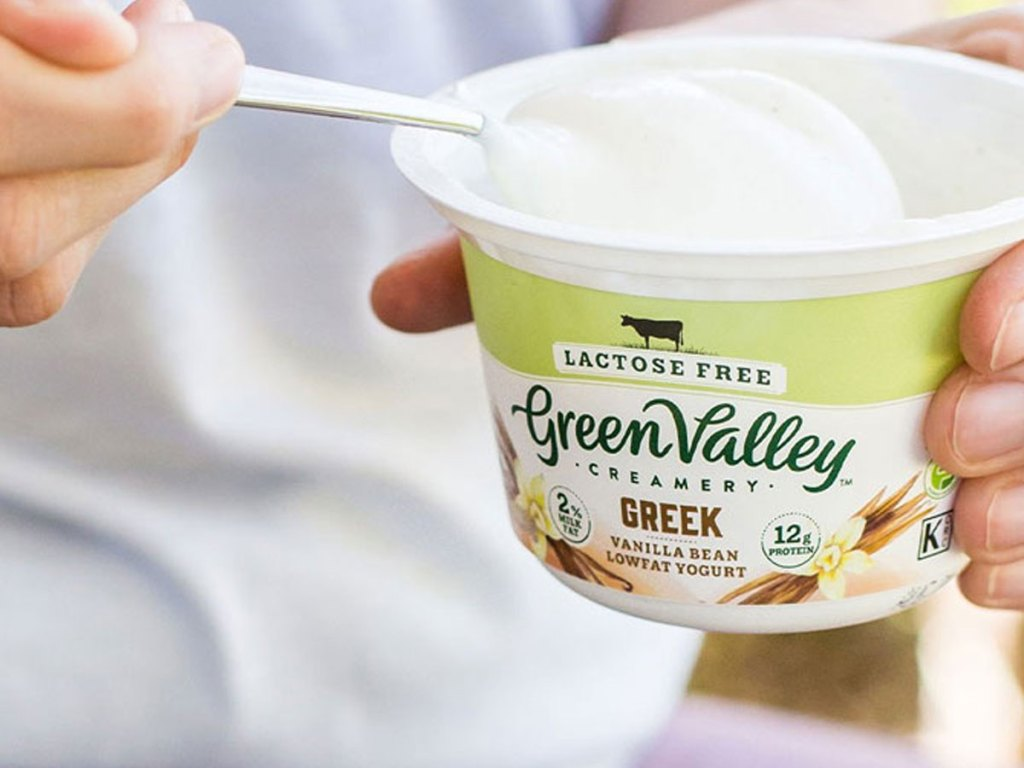 hand holding a green valley greek yogurt