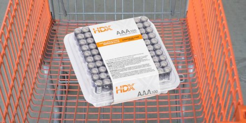 HDX AA Batteries 48-Pack Only $13.99 Shipped + Home Smart Lock Deals at HomeDepot.com