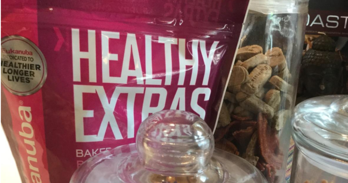healthy extras dog treats bag