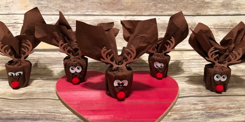 Need a Last Minute Gift Idea for Your Kiddo's Class? Make Mini Reindeer!